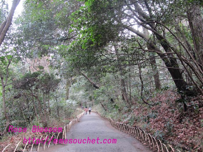 kiyomasamori20110324.jpg