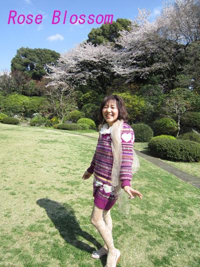 koalasoto20100408.jpg