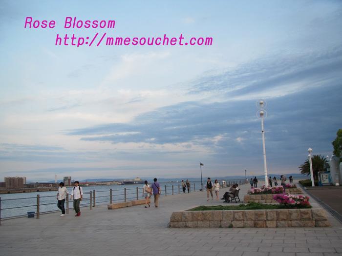 kobe20110574.jpg