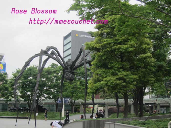 kumo20110510.jpg