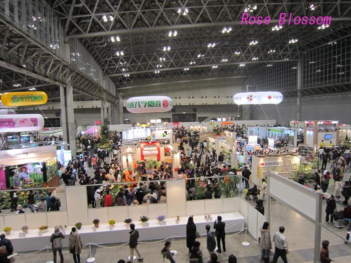 makuhari20100328.jpg