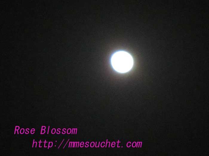 moon20100429.jpg