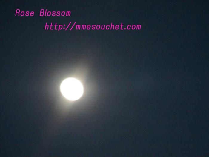 moon201101181.jpg