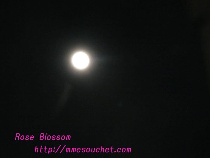 moon201102172.jpg