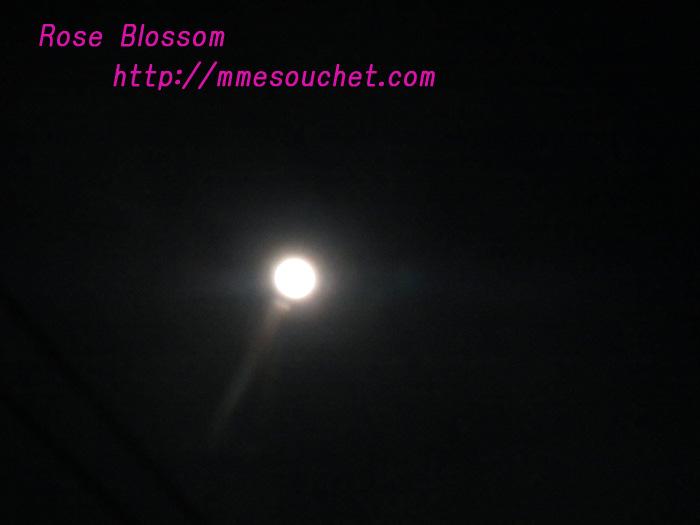 moon20110318.jpg