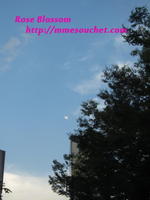 moon20110514.jpg