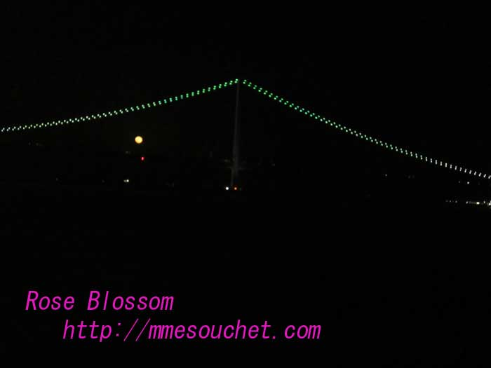 moonbridge201004291.jpg