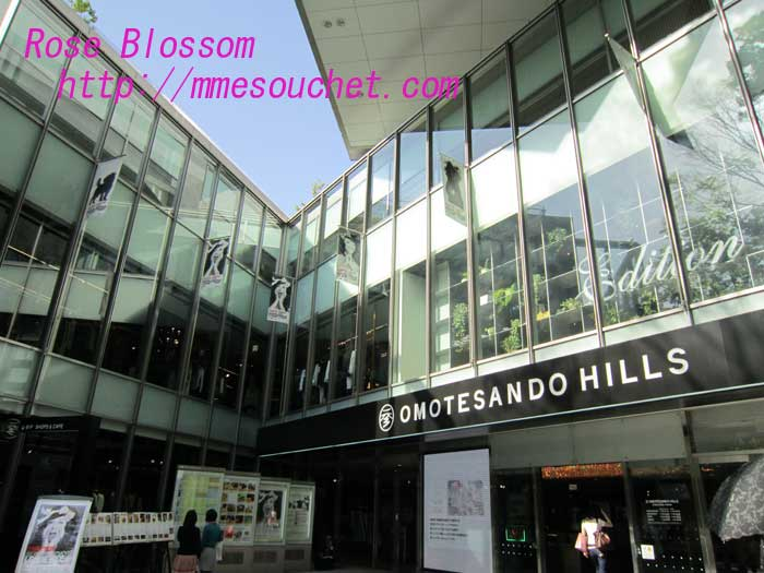 omotesandouhiruz20100506.jpg