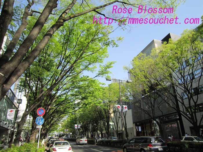 omotwsando20100506.jpg