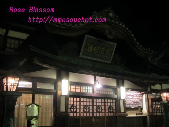 onsen20110402.jpg