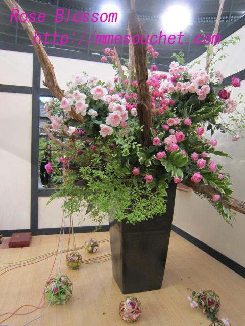 osahachitei20100512.jpg