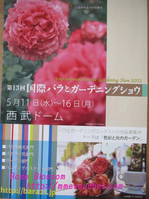 panf20110125.jpg