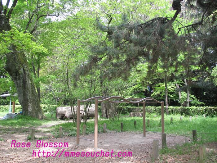 park20110508.jpg