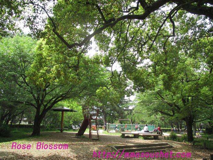 park201105082.jpg