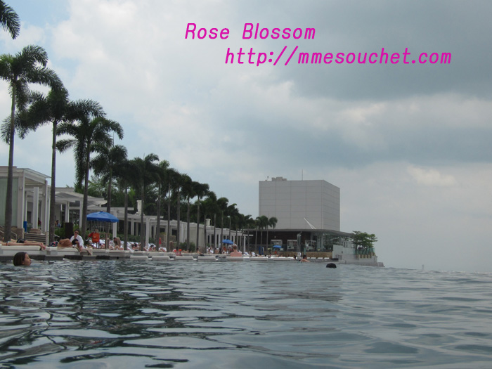 pool201104141.jpg