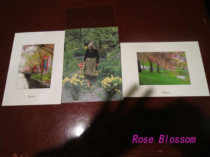 postcardboston20100411.jpg