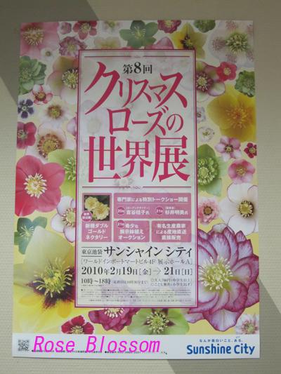 poster20100220.jpg
