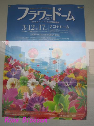 poster20100312.jpg