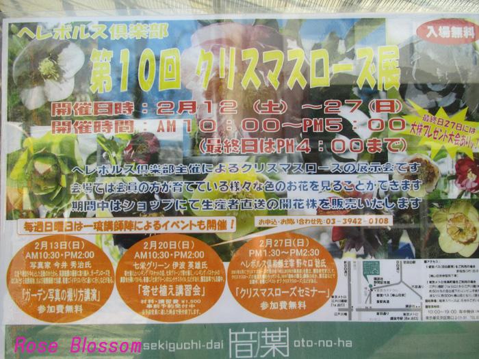 poster20110215.jpg