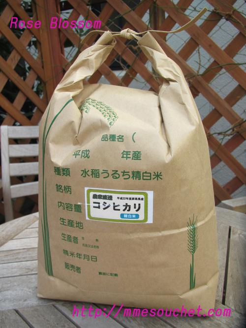 rice20110227.jpg