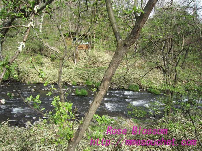 river20100509.jpg