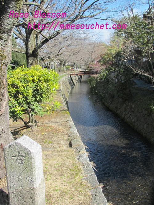 river20110311.jpg