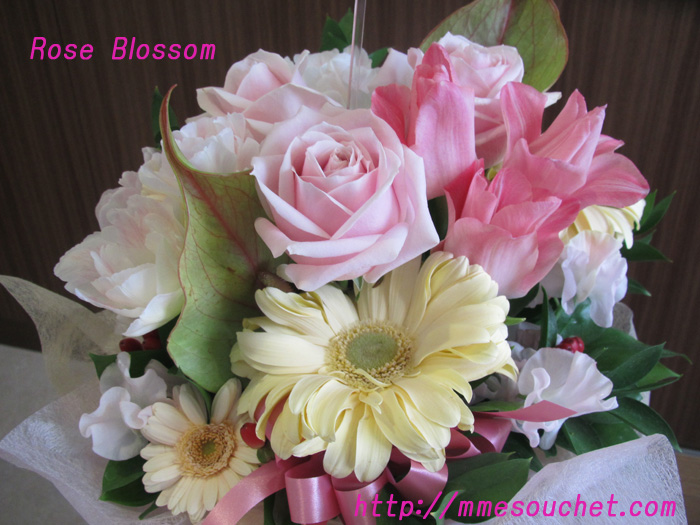 rose20110208.jpg