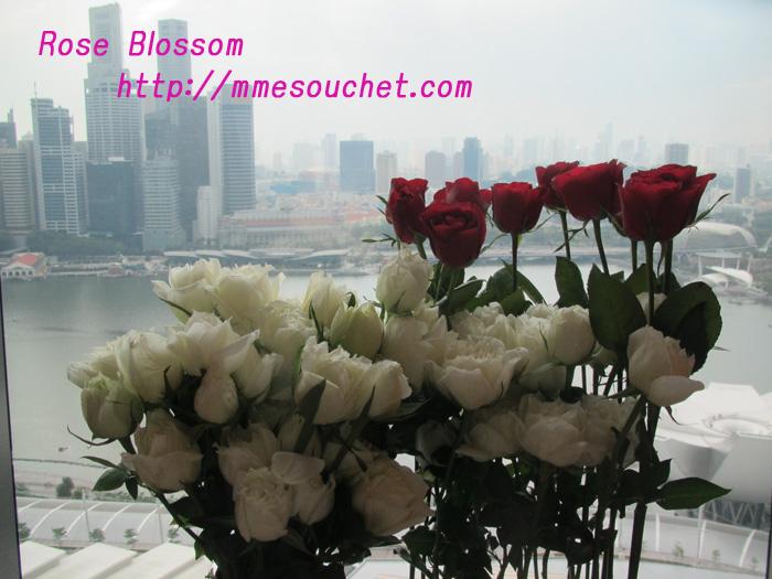 rose20110412.jpg