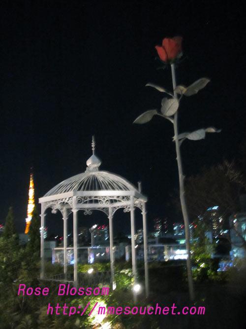 rosegarden20110106.jpg