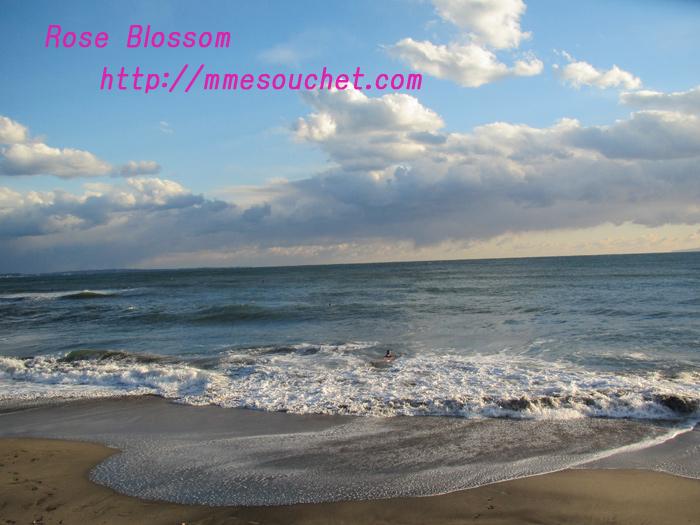 sea201101162.jpg