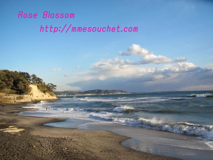 sea201101164.jpg