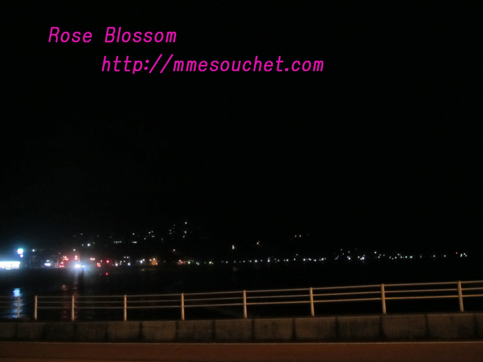 sea201102241.jpg