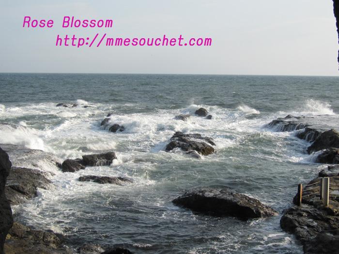 sea201102273.jpg