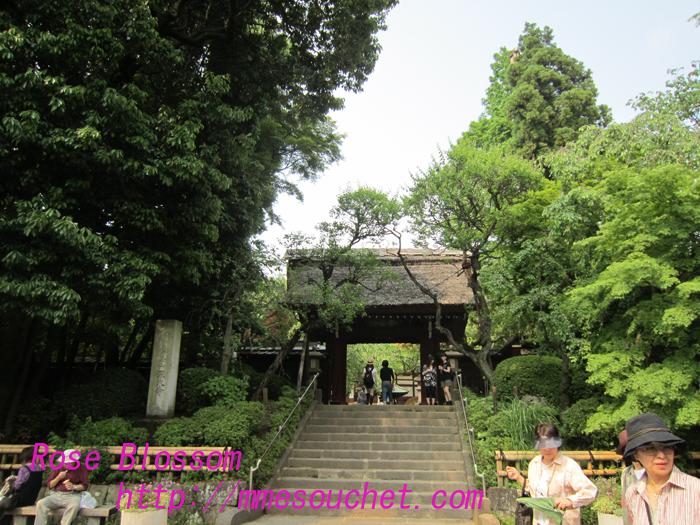 sindaiji20100525.jpg