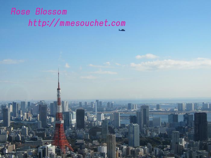 sky20110113.jpg