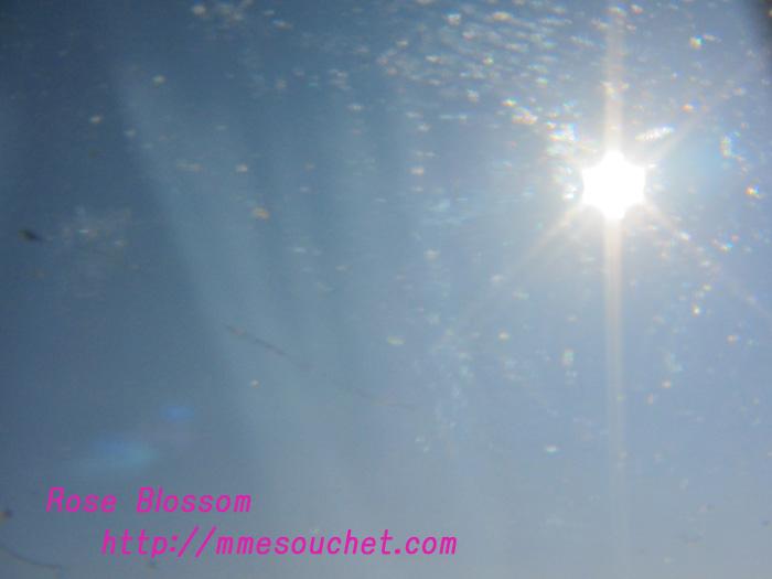 sky20110213.jpg