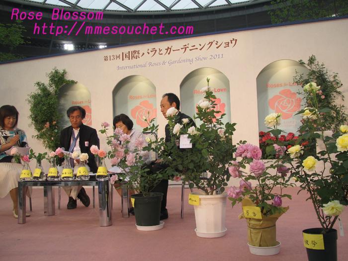 stage20110511.jpg