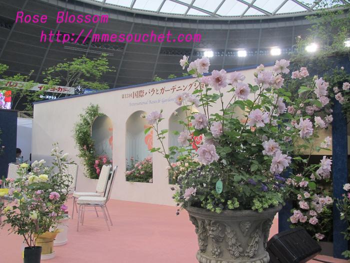 stage201105112.jpg
