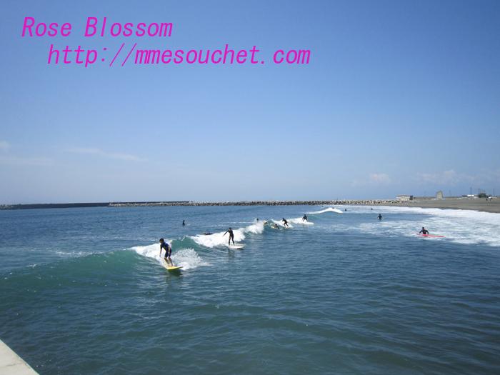 surfer20100521.jpg