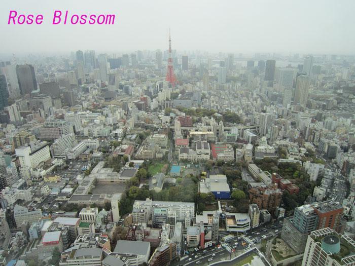 tokyo20100416.jpg
