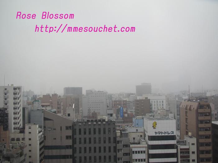 tokyo20110211.jpg