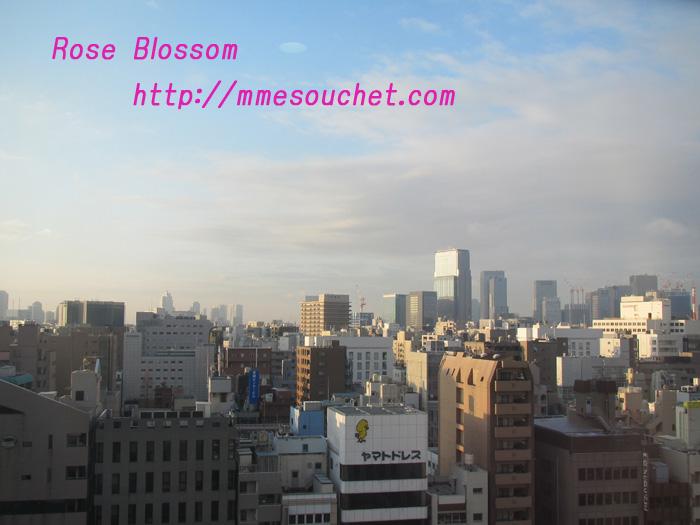tokyo20110212.jpg
