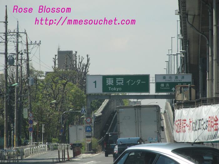 tokyointa20110420.jpg
