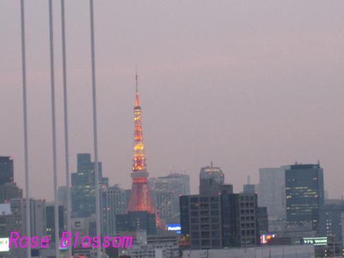 tokyotower20100219.jpg