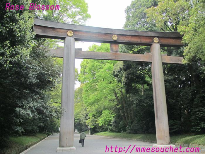 torii20110422.jpg