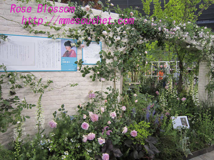 totochangarden20100512.jpg