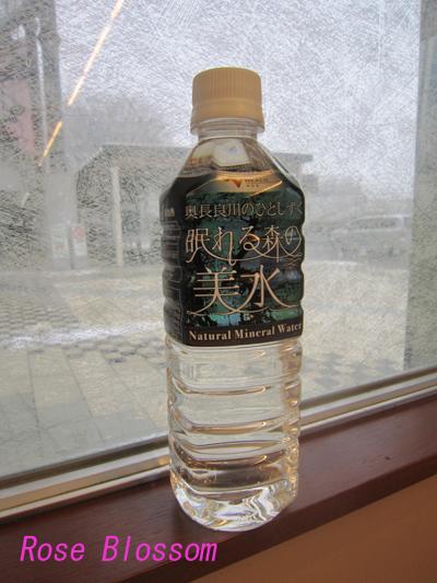 water20100329.jpg