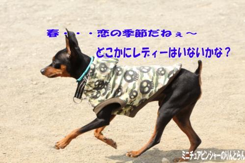 IMG_4272[1]08