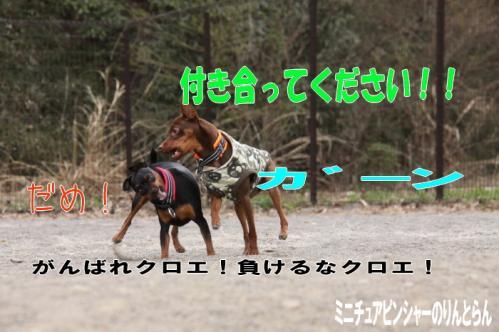 IMG_4783[1]29