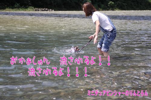 IMG_0557_R.jpg